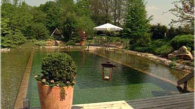 Schwimmteich Und Gartenteich In Einem