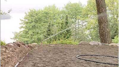 Regenwasser zur Gartenbewässerung