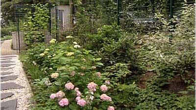 Gartenplanung-kleiner-garten-fachmann